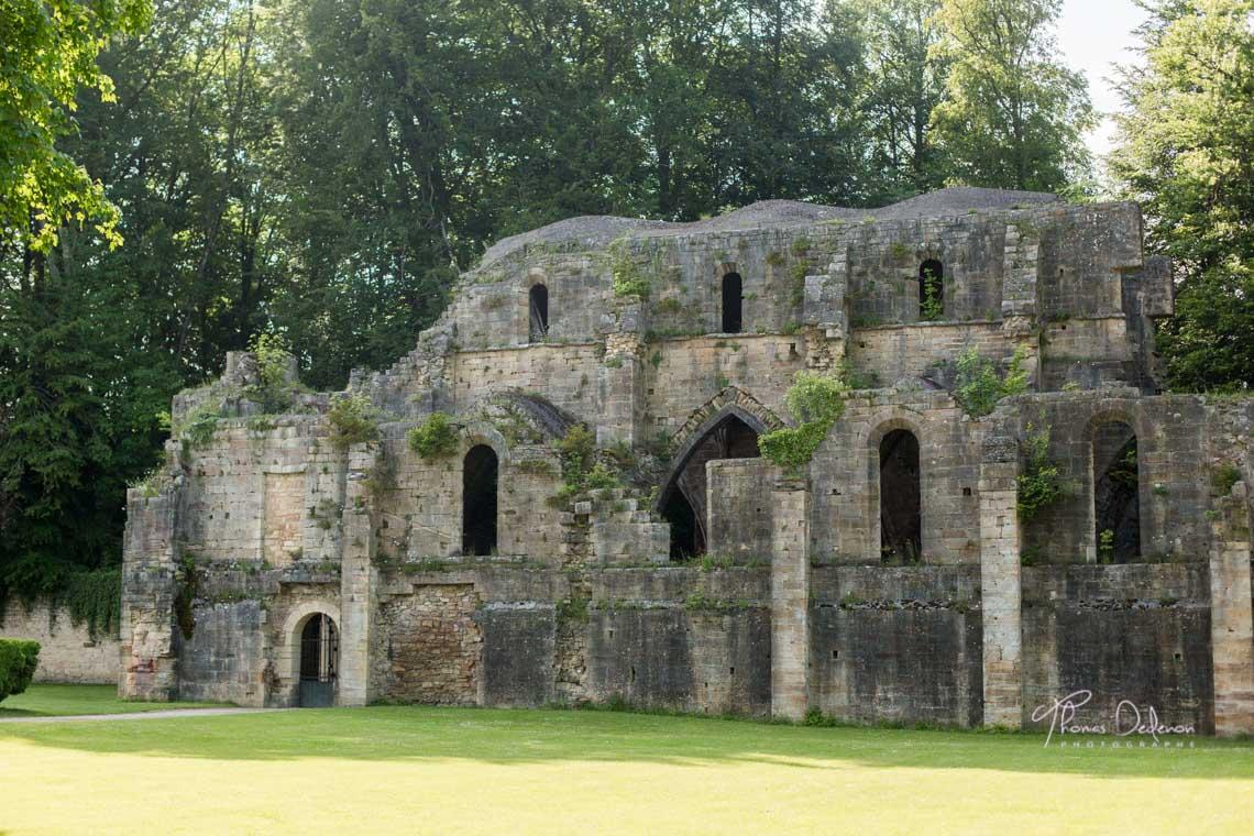 ruines de l'abbaye de trois fontaines