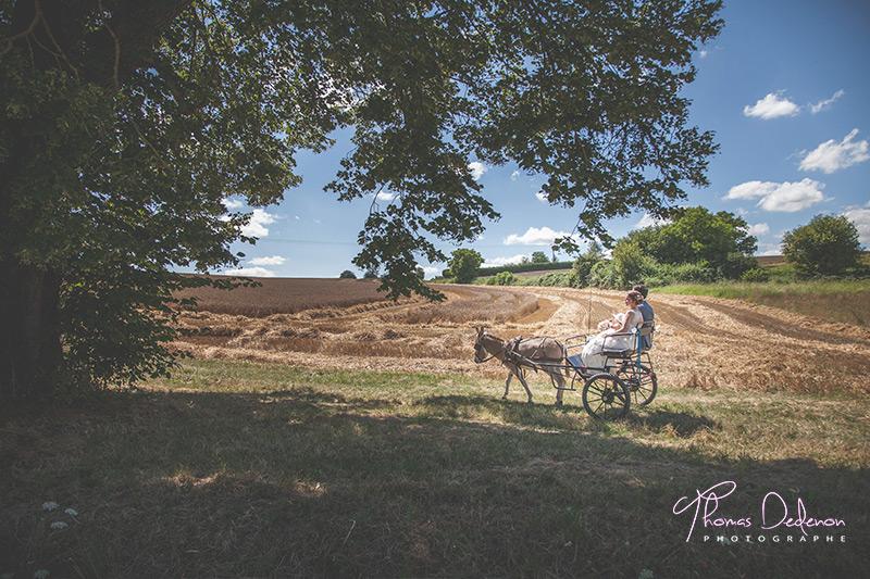 photo de calèche avec âne